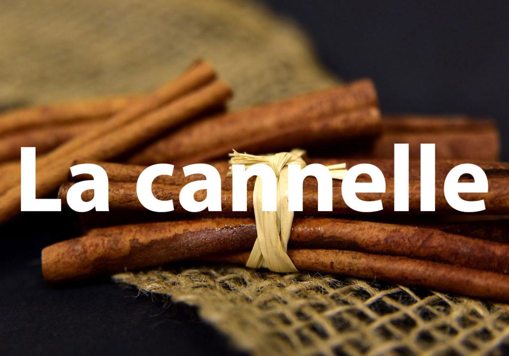 cinnamon-3852212_1920-1000x700